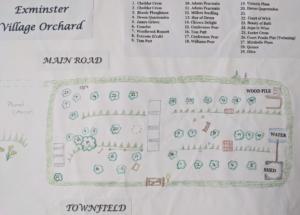 Orchard Plan (002).jpg